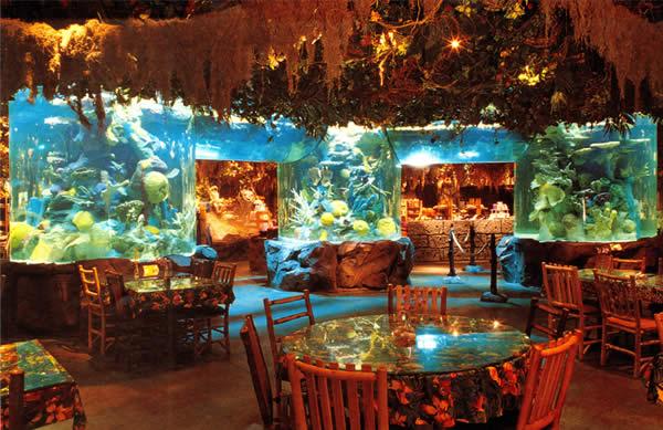 Rainforest Cafe on science cafe, halloween cafe, corner bakery cafe, jungle cafe, zoo cafe, aquarium cafe, blue cafe, vegas cafe, sunrise cafe, sandella's flatbread cafe, hardrock cafe, animal cafe, first hard rock cafe, london cafe, new hard rock cafe, disney cafe, t-rex cafe, island cafe, space cafe, urbane cafe,